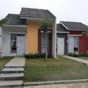 Perumahan Subsidi Terlaris Di Bogor.. Cicilan Mulai 700an Rbu/Bln
