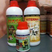 Suplemen /Vitamin Ternak Sapi ,Kambing Dll