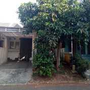 Rumah Bagus Murah Dalam Cluster Bintaro Jaya