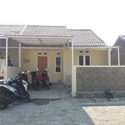 Rumah 1 Bln Siap Huni Ditlogomulyo