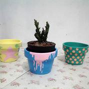 Pot Gerabah Lukis + Tanaman Kaktus [Satu Paket]