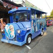 Kereta Mini Wisata Sepur Kelinci Odong Odong