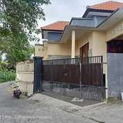 Rumah Lantai 1 View Sawah Di Kawasan Buduk Mengwi Badung