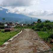 Tanah Tengah Kota Cocock Untuk Vila Dan Investasi Dibatu