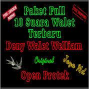 Paket Suara Walet Terbaru Deny Walet Welliam 10 Fd Original Open Protek