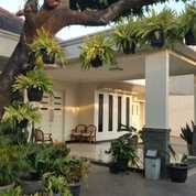 Rumah Mewah 2 Lantai Siap Huni Full Furnish Dibintara Bekasi Barat