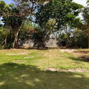 Tanah Di Jl Utama Beraban Seminyak Dkt Potato Head Kudeta Seminyak Square