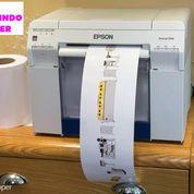READY Printer Foto Epson Surelab D700/D 700
