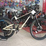 Sepeda Polygon Siskiu D7