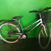 Sepeda Polygon Sierra