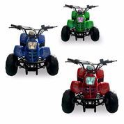 (INDENT) ATV Speedy 110cc