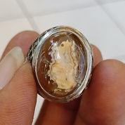 Natural Agate Gambar Kepompong Ulat Sutra
