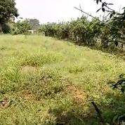Tanah Strategis Lokasi Curug Induk Parung Jambu Bogor