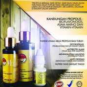 Propolis Melia Asli Bandung