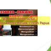 WA 0857-3096-2264, Distributor Minyak Lintah Hitam Papua Murah Di Blitar
