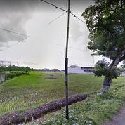Tanah Area Pergudangan Dasan Cermen Bengkel Mataram