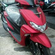 Yamaha FREEGO S ( PROMO )