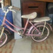 Sepeda Mini Roda 2