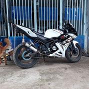 Kawasaki Ninja RR SE 2013