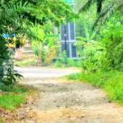 Tanah Cisarua Bogor