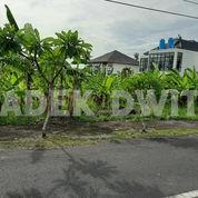 Tanah Jalan Utama Uma Buluh Kayu Tulang Canggu Dekat Berawa Batubolong