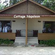 PROMO Pulau Sepa Stay Cottage Napoleon ( Jan - Feb 2020 )