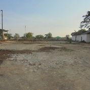 [7A922D] Tanah 1995m2 - Wonosari, Jawa Tengah