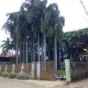 Tanah Di Legoso Ciputat Tangerang Selatan
