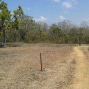 Tanah Kavling 20 Are Di Ds Ungasan Bali cocok untuk bangun villa