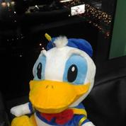 Boneka Si Bebek jahil & apes Donald Duck grade super ORI SNI murah new
