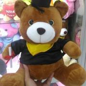 Boneka mainan bayi&anak beruang teddy coklat sarjana/teddy bear brownie