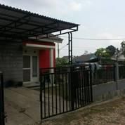 Rumah Berhalaman Luas Di Samarinda