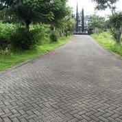 Tanah samping musium satwa cocok untuk villa dibatu