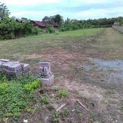 Tanah harga termiring dekat pelabuhan dan kawasan pabrik di Bali barat