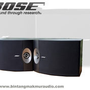 Bose 301 Series V Direct / Reflecting Speaker System