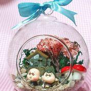 terrarium gantung pot kaca bola kaca vase bunga dekorasi terrarium