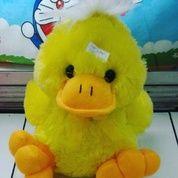 Boneka Bebek raspo / Duck Raspo Doll grade Super Ori SNI NEW murmer Bahan velboa halus isi dracon empuk realpict foto seperti asli lucu