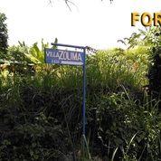 Di Jual Tanah Untuk Investasi di Desa Lalanglinggah Kabupaten Tabanan