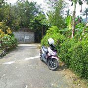 Tanah Strategis Dan Tenang - Cocok Untuk Hunian Di Kota Ungaran, Semarang