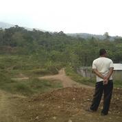 Investasi Tanah Di Belakang Perumahan Siwarak Residence Ungaran, Semarang