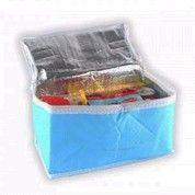 Cooler Bag Tas Penyimpan Hawa Dingin Unik ASI Panas