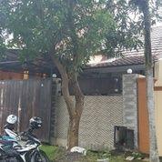 Rumah Minimalis Siap Huni Di Taman Yasmin