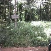 BU Lahan Tanah Kebun 181 M2 Di Bojong Purwakarta