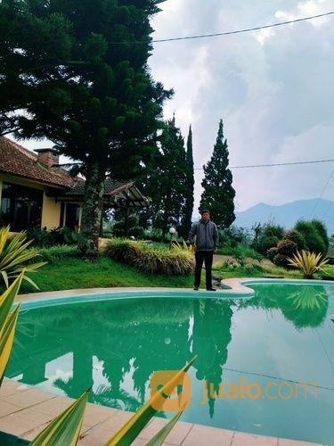 Villa alam puncak villa disewa 13790311