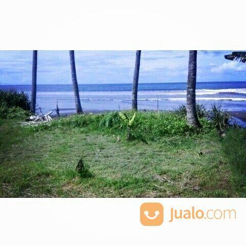 Tanah los pantai pasu tanah dijual 15124197