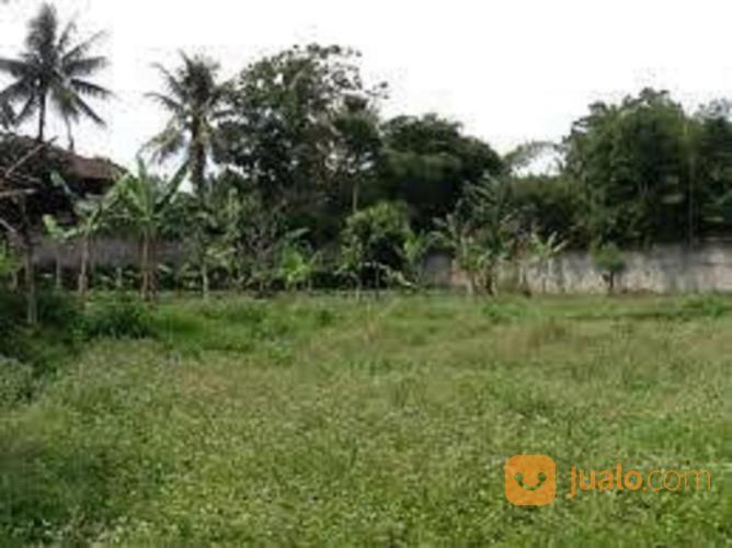 Harga njop tanah buki tanah dijual 17019227