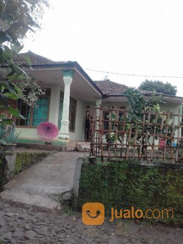 Rumah di pedesaan mur rumah dijual 17297843