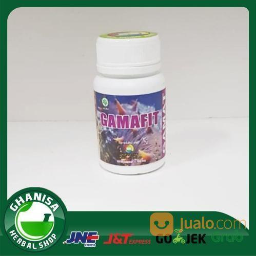 Kapsul gamafit nurusy nutrisi dan suplemen 18937655