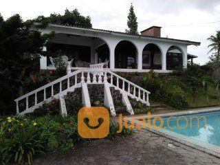 Villa cisarua puncak villa disewa 19264887
