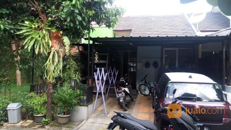 Rumah asri aman luas rumah dijual 19835899